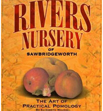 Rivers Nursery of Sawbridgeworth